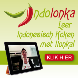 http://www.indolonka.nl/vega-kookcursus
